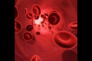L'examen sanguin