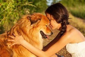Les bienfaits de nos animaux de compagnie